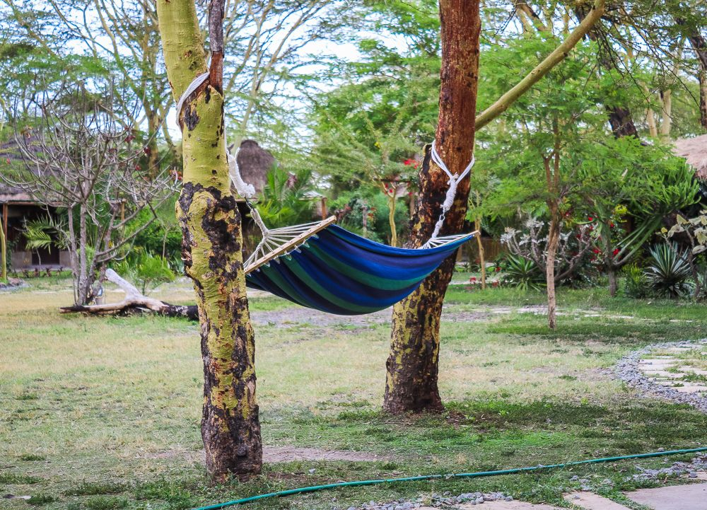 Explore and work on the wild outskirts of Nairobi